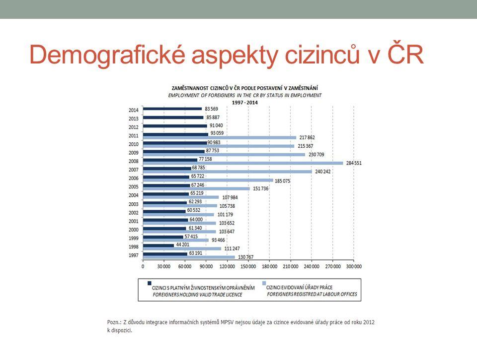 Demografické aspekty cizinců v ČR