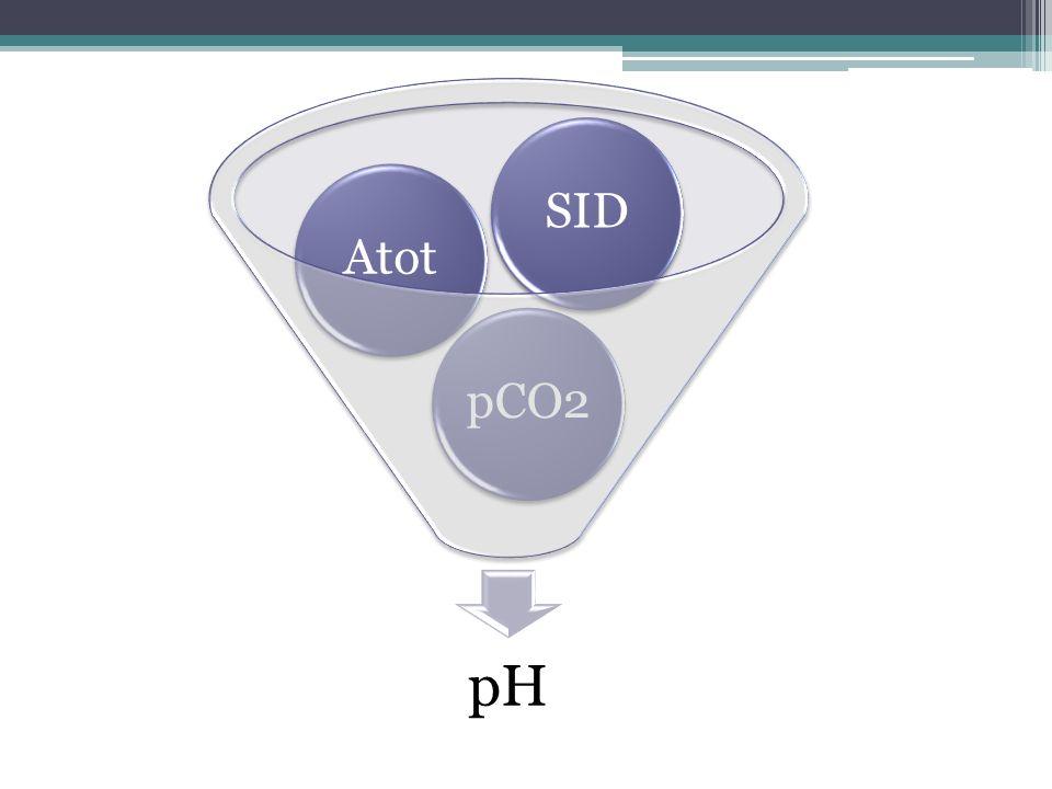pH pCO2AtotSID