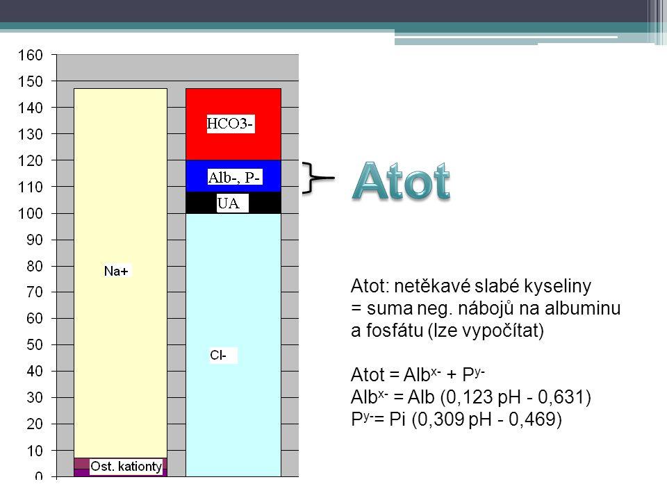 Atot: netěkavé slabé kyseliny = suma neg. nábojů na albuminu a fosfátu (lze vypočítat) Atot = Alb x- + P y- Alb x- = Alb (0,123 pH - 0,631) P y- = Pi