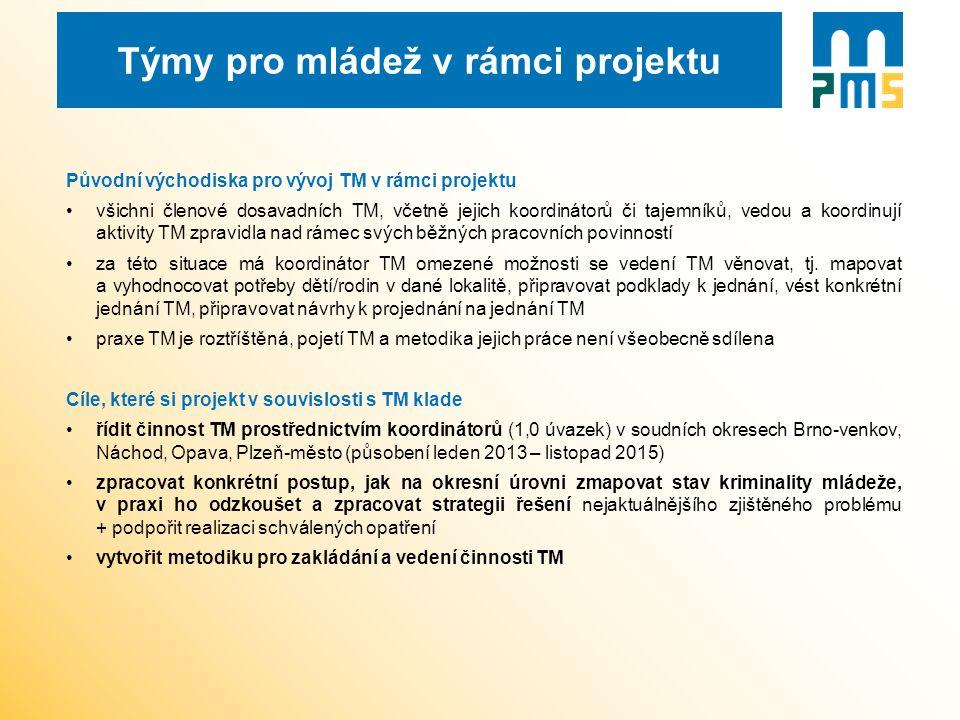Vytváření a personální obsazení TM V pilotních okresech byla nejprve zmapována aktuální praxe TM, byl proveden monitoring organizací působících v rámci systému práce s ohroženou mládeží a zjišťovány problémové oblasti.