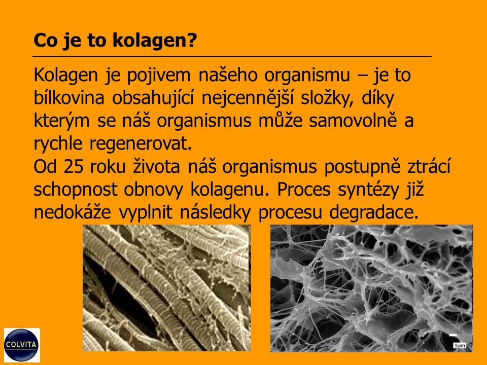 Kde se v těle kolagen vyskytuje.