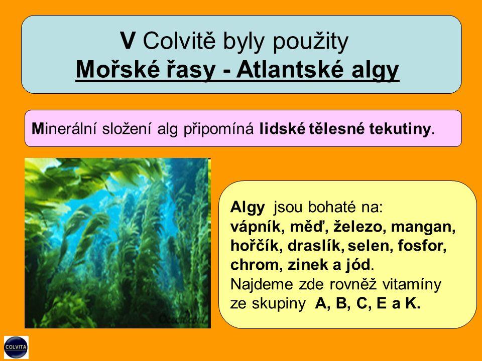 Minerální složení alg připomíná lidské tělesné tekutiny.