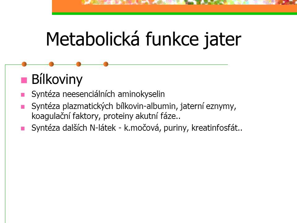 Metabolická funkce jater Bílkoviny Syntéza neesenciálních aminokyselin Syntéza plazmatických bílkovin-albumin, jaterní eznymy, koagulační faktory, pro