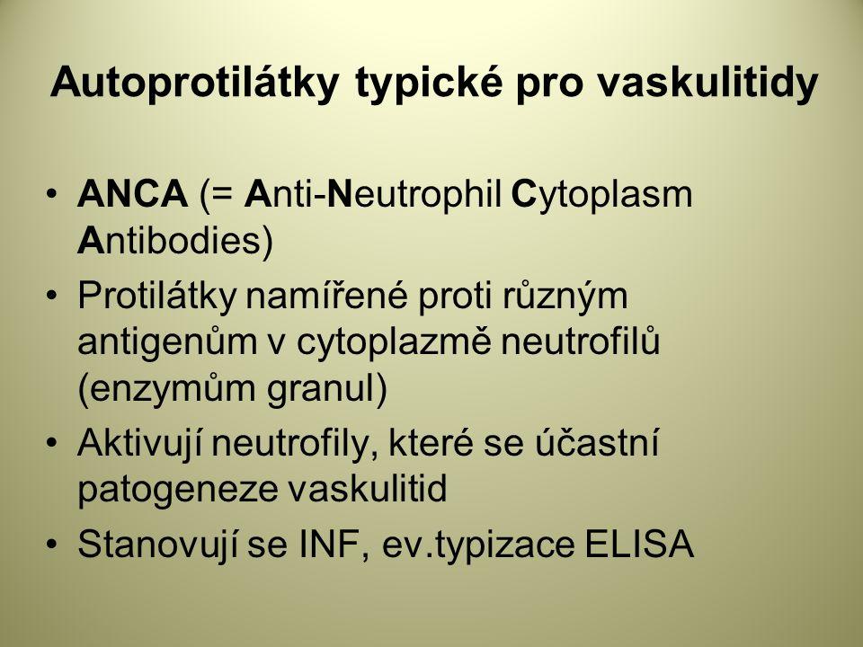 Autoprotilátky typické pro vaskulitidy ANCA (= Anti-Neutrophil Cytoplasm Antibodies) Protilátky namířené proti různým antigenům v cytoplazmě neutrofilů (enzymům granul) Aktivují neutrofily, které se účastní patogeneze vaskulitid Stanovují se INF, ev.typizace ELISA