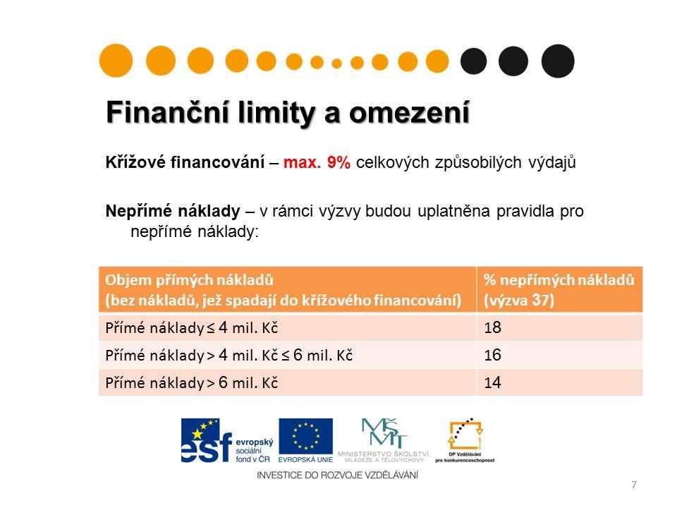 Finanční limity a omezení 7 Křížové financování – max.