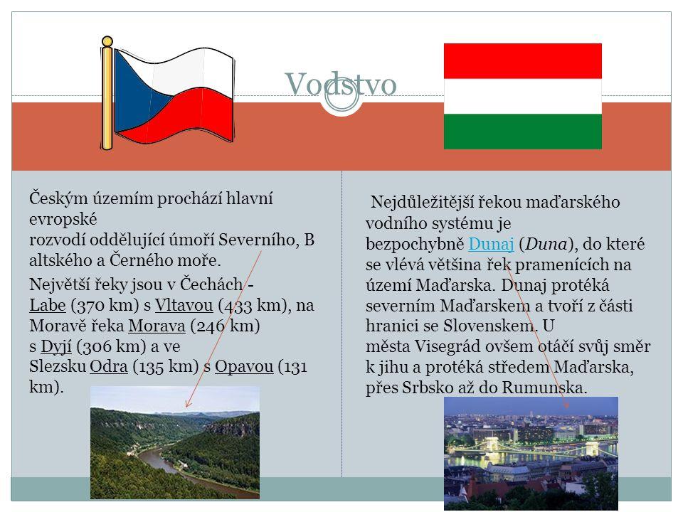 Platidlem je 1 koruna česká Měna Platidlem je 1 Forint
