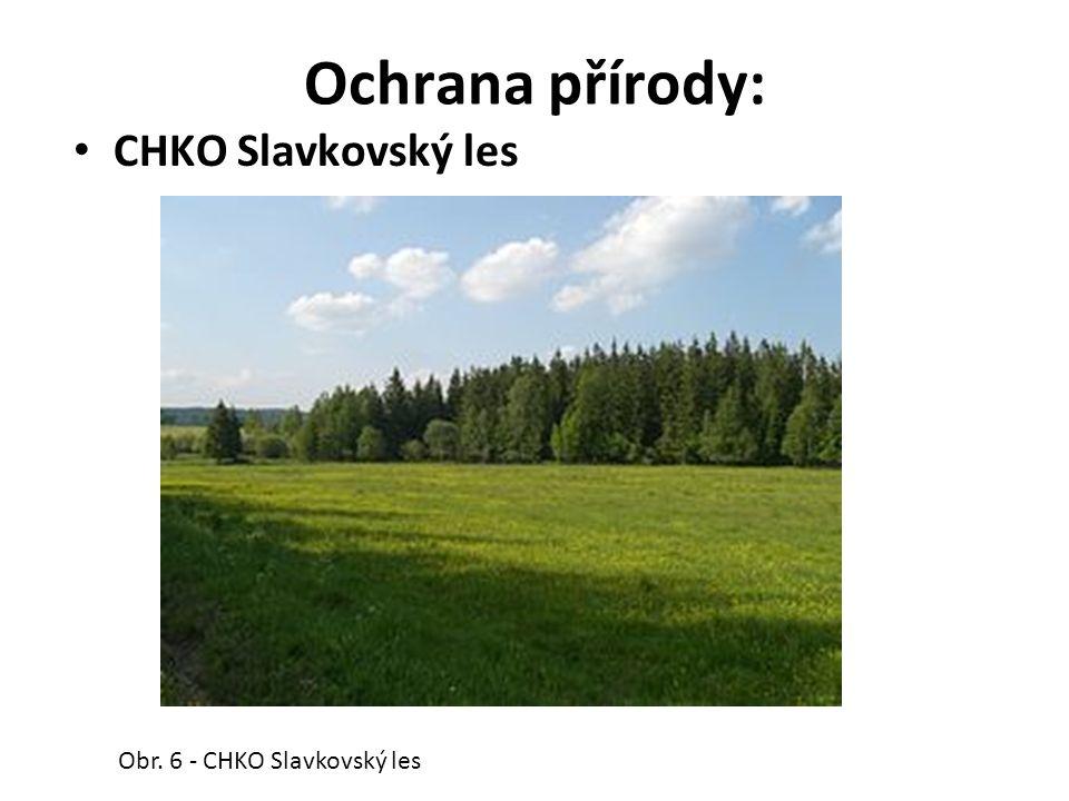 Ochrana přírody: CHKO Slavkovský les Obr. 6 - CHKO Slavkovský les
