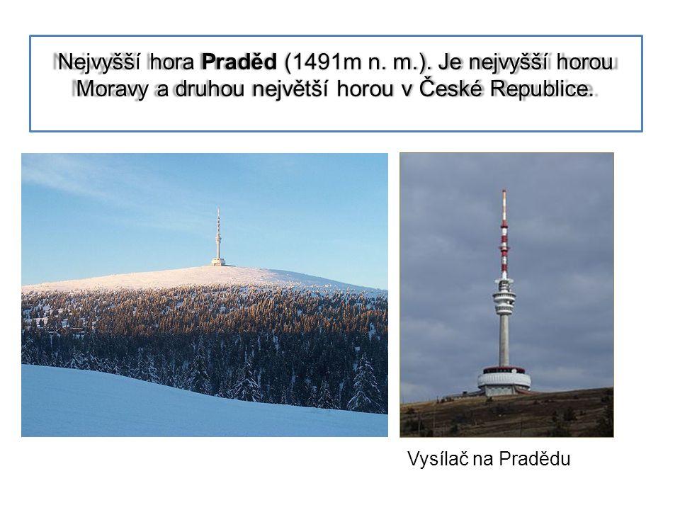 Nejvyšší hora Praděd (1491m n.m.).