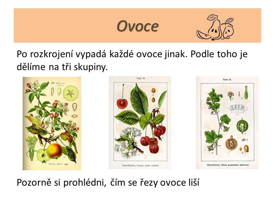 Dělení ovoce 1)Peckovice - uprostřed plodu mají jednu pecku (švestka, třešeň, meruňka,…) 2) Malvice - mají jádřinec s jadérky (jablko, hruška) 3) Bobule - mají semena po celém plodu (rybíz, angrešt, hroznové víno,…)