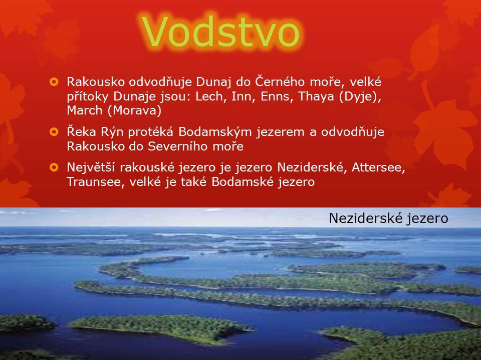  Rakousko odvodňuje Dunaj do Černého moře, velké přítoky Dunaje jsou: Lech, Inn, Enns, Thaya (Dyje), March (Morava)  Řeka Rýn protéká Bodamským jezerem a odvodňuje Rakousko do Severního moře  Největší rakouské jezero je jezero Neziderské, Attersee, Traunsee, velké je také Bodamské jezero Neziderské jezero