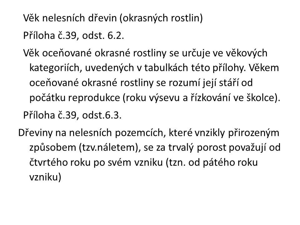 Věk nelesních dřevin (okrasných rostlin) Příloha č.39, odst.