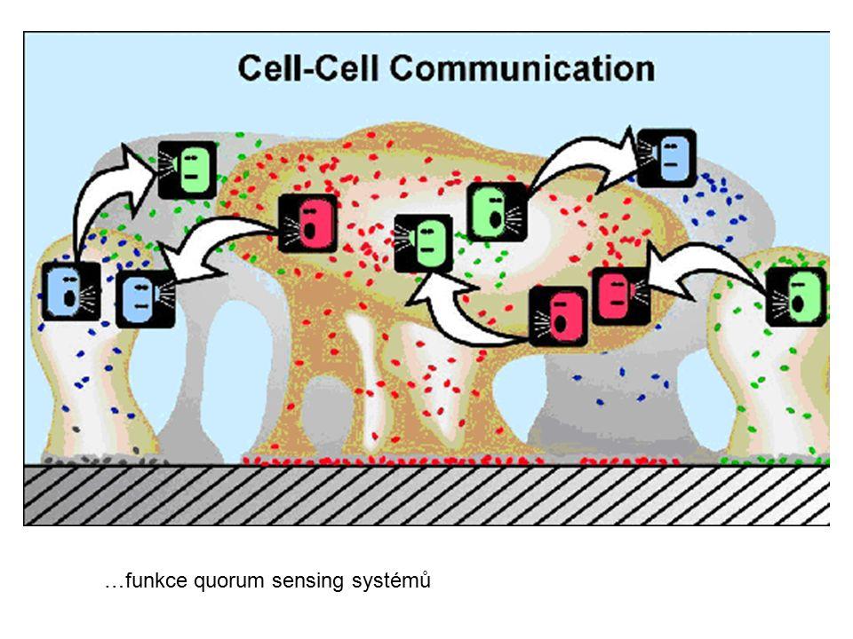 …funkce quorum sensing systémů