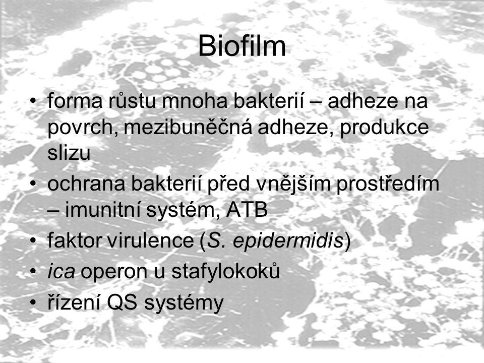 Biofilm forma růstu mnoha bakterií – adheze na povrch, mezibuněčná adheze, produkce slizu ochrana bakterií před vnějším prostředím – imunitní systém, ATB faktor virulence (S.