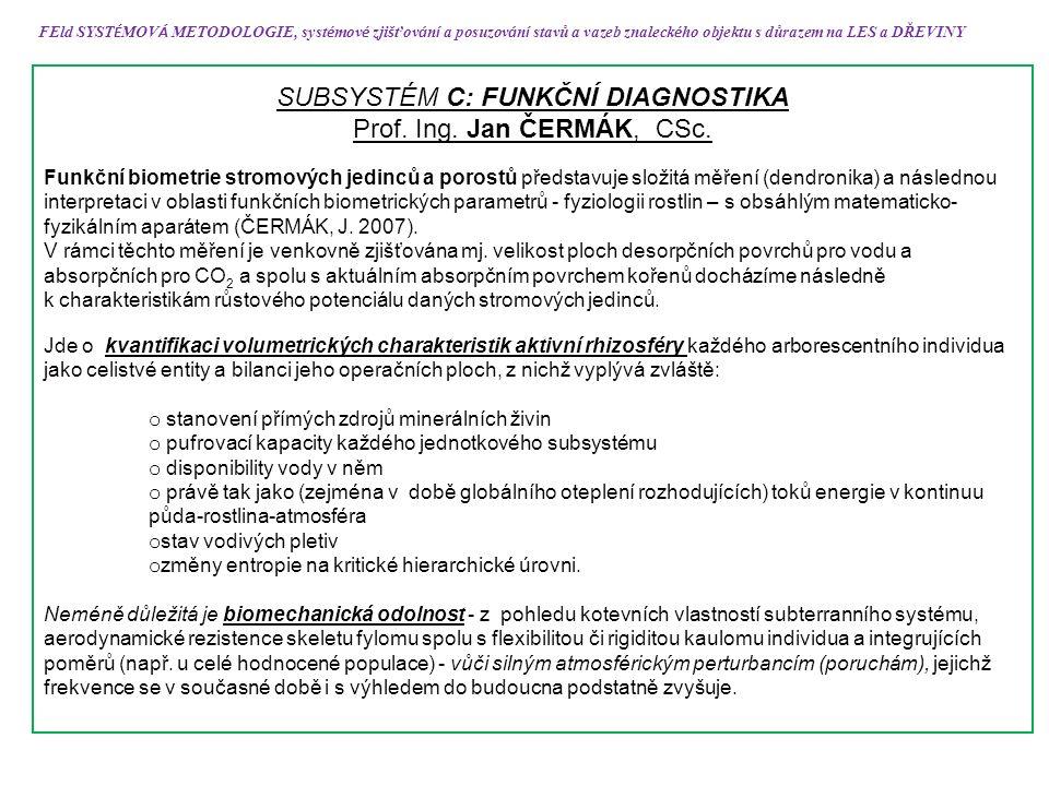SUBSYSTÉM C: FUNKČNÍ DIAGNOSTIKA Prof. Ing. Jan ČERMÁK, CSc.
