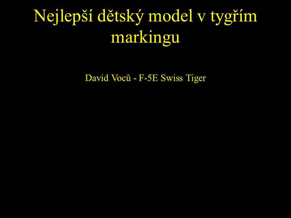 Nejlepší dětský model v tygřím markingu David Voců - F-5E Swiss Tiger