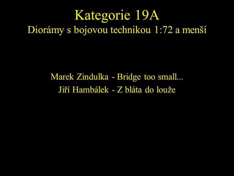 Marek Zindulka - Bridge too small... Jiří Hambálek - Z bláta do louže