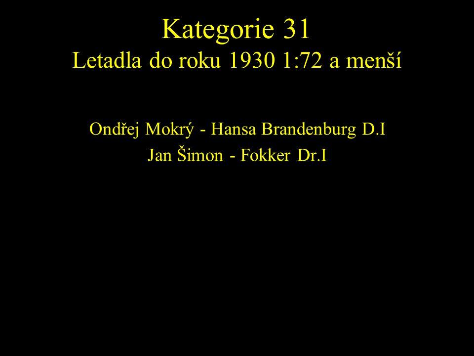 Ondřej Mokrý - Hansa Brandenburg D.I Jan Šimon - Fokker Dr.I