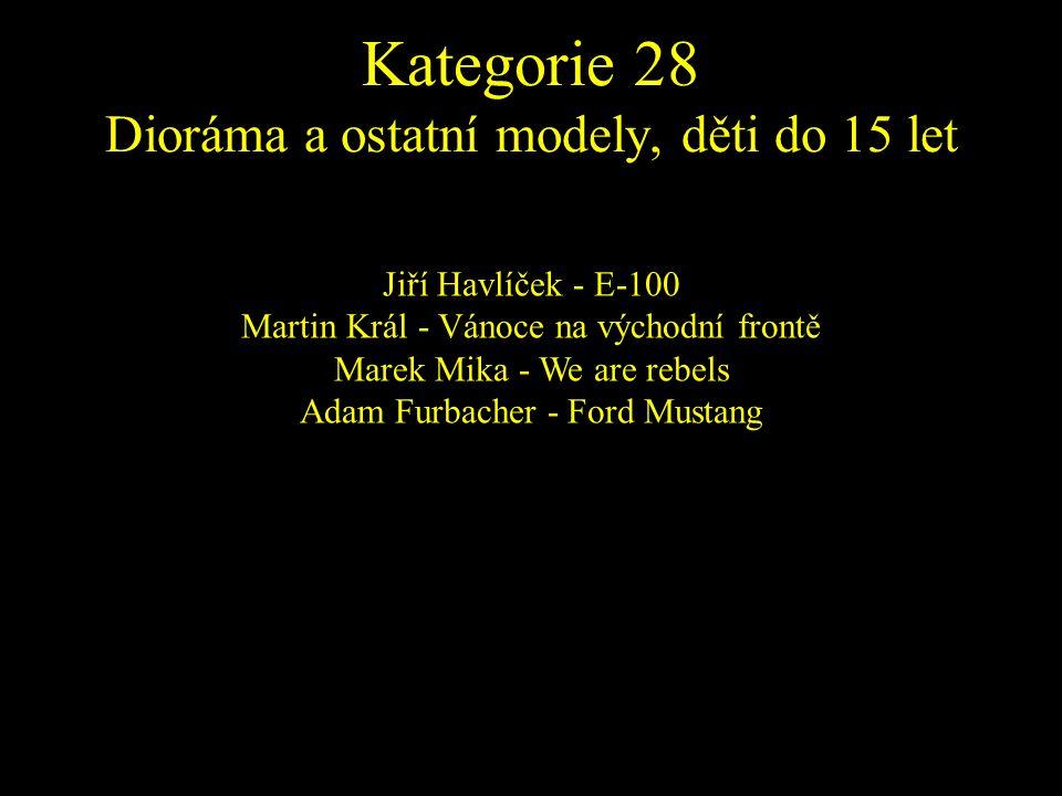Jiří Havlíček - E-100 Martin Král - Vánoce na východní frontě Marek Mika - We are rebels Adam Furbacher - Ford Mustang