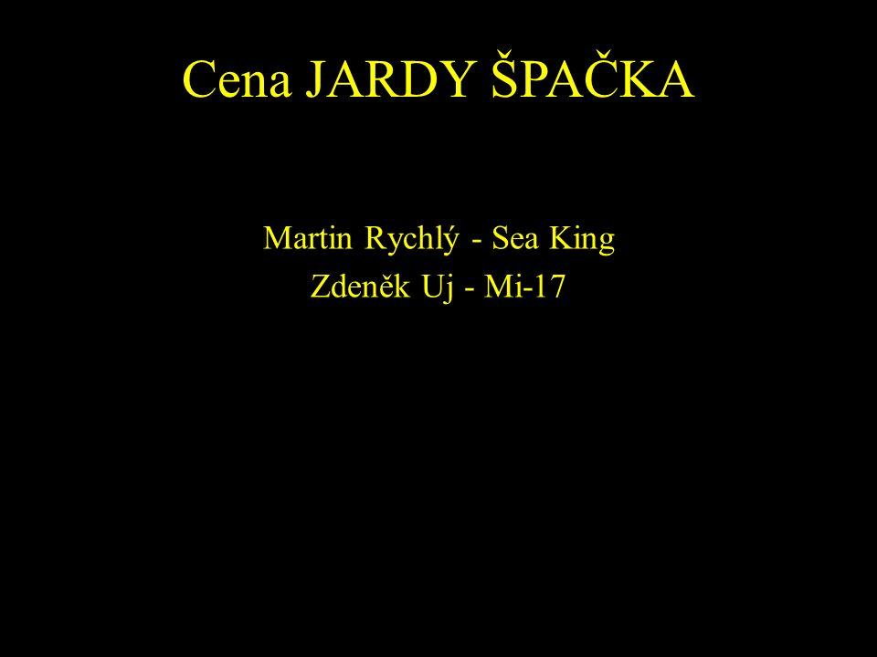 Martin Rychlý - Sea King Zdeněk Uj - Mi-17