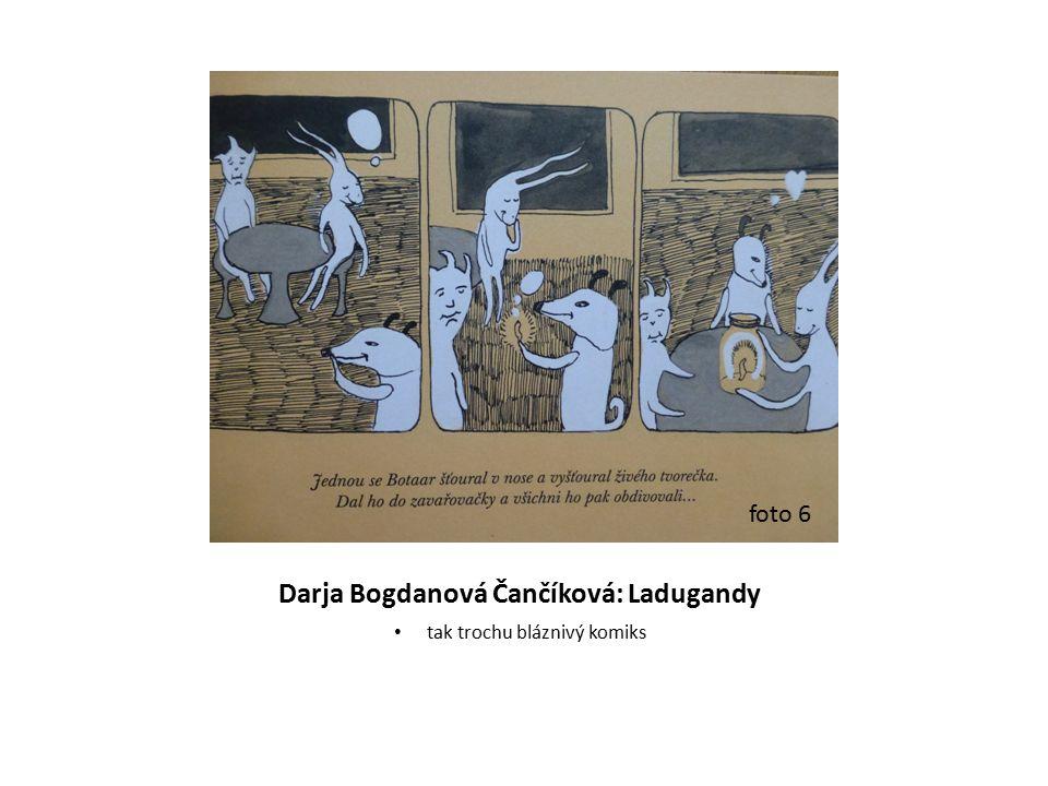 Darja Bogdanová Čančíková: Ladugandy tak trochu bláznivý komiks foto 6