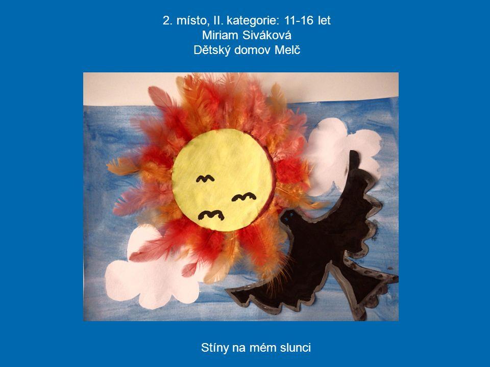 2. místo, II. kategorie: 11-16 let Miriam Siváková Dětský domov Melč Stíny na mém slunci
