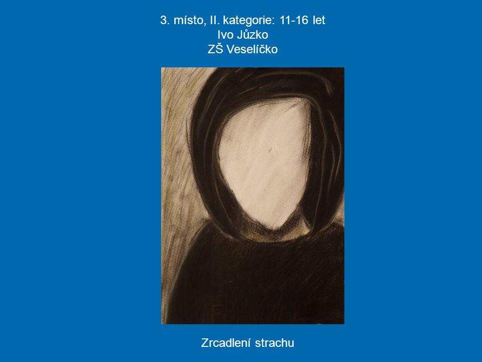 3. místo, II. kategorie: 11-16 let Ivo Jůzko ZŠ Veselíčko Zrcadlení strachu