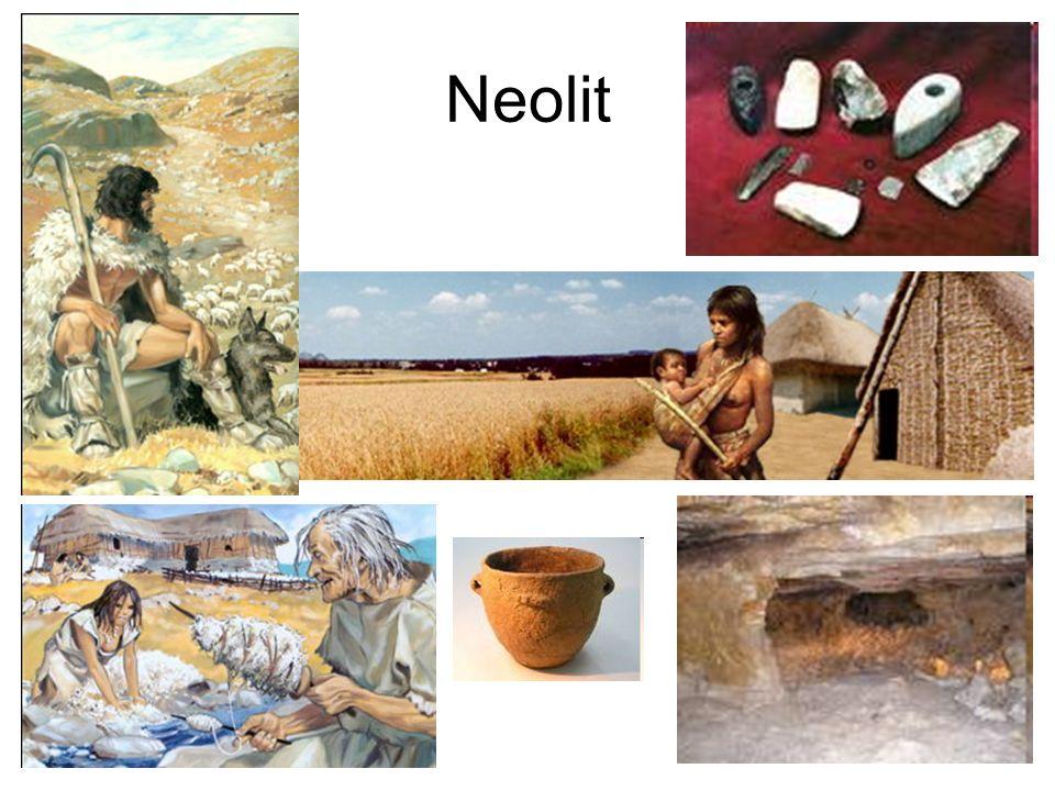 Neolit