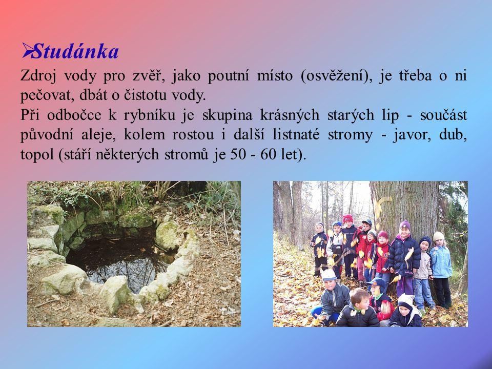 Zdroj vody pro zvěř, jako poutní místo (osvěžení), je třeba o ni pečovat, dbát o čistotu vody.
