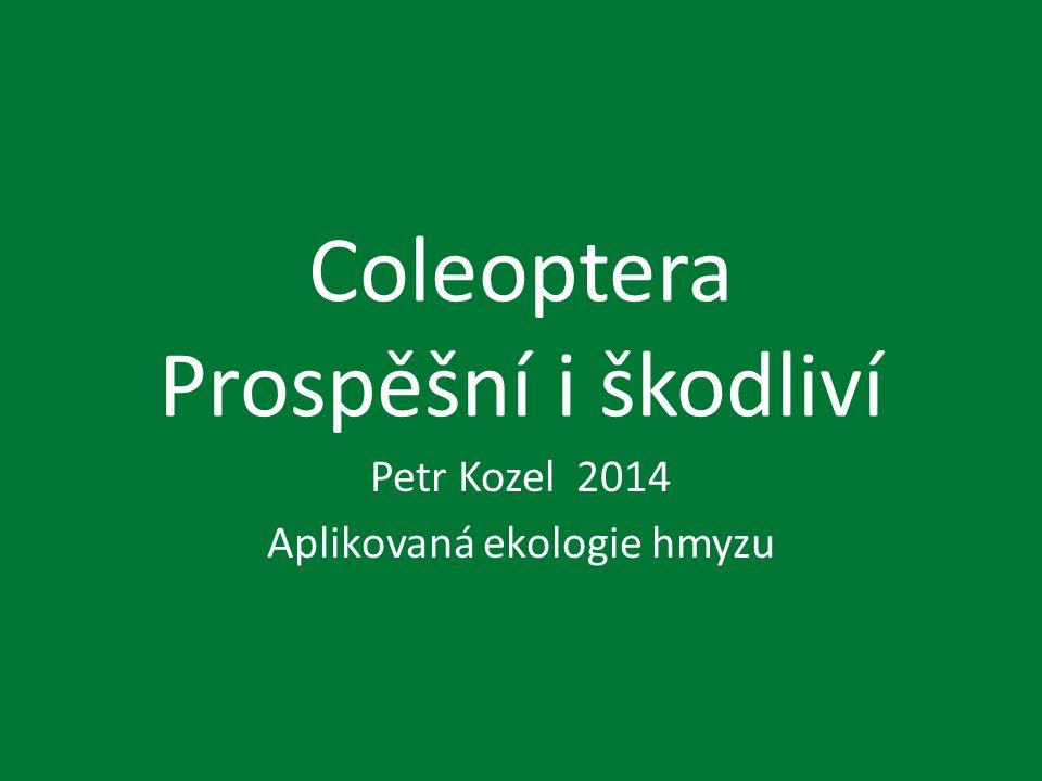 Coleoptera Prospěšní i škodliví Petr Kozel 2014 Aplikovaná ekologie hmyzu