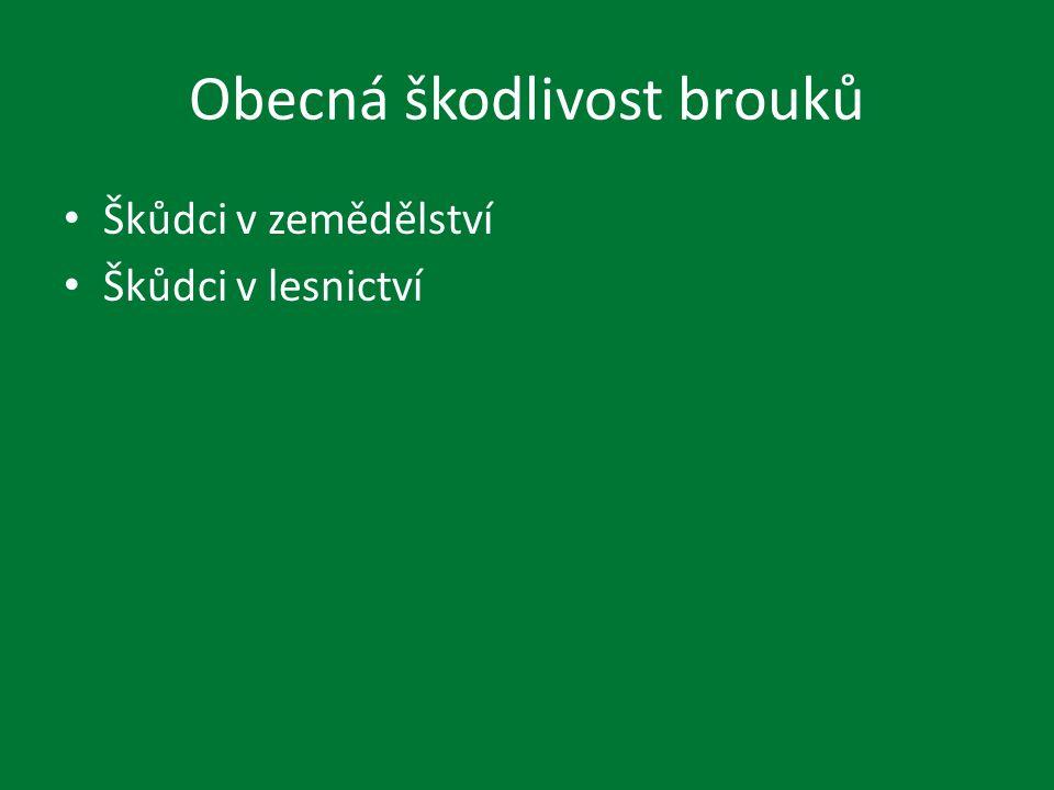 Curculionidae Otiorrhynchus ligustici, Sitona crinitus – Řepa, vojtěška Pissodes pini – Borovice, smrky Hylobius abietis – borovice