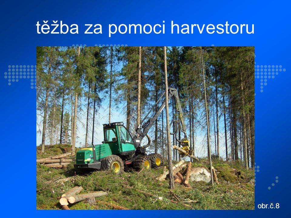 těžba za pomoci harvestoru obr.č.8