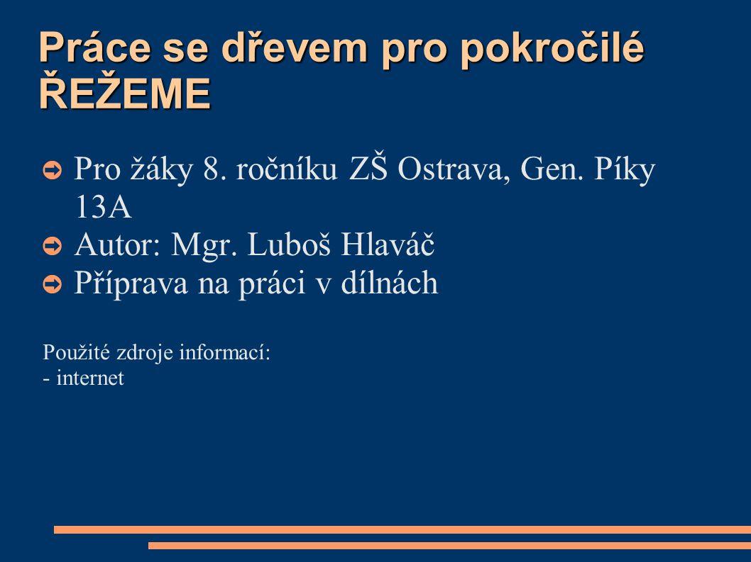 Práce se dřevem pro pokročilé ŘEŽEME ➲ Pro žáky 8.