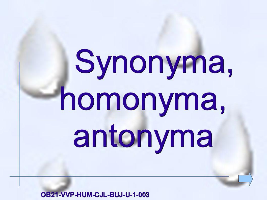 Synonyma, homonyma, antonyma Synonyma, homonyma, antonymaOB21-VVP-HUM-CJL-BUJ-U-1-003