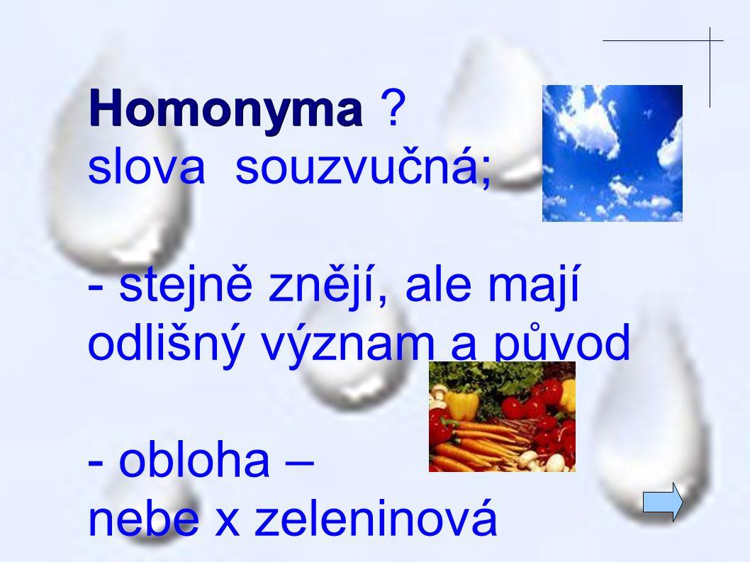 Homonyma Homonyma .