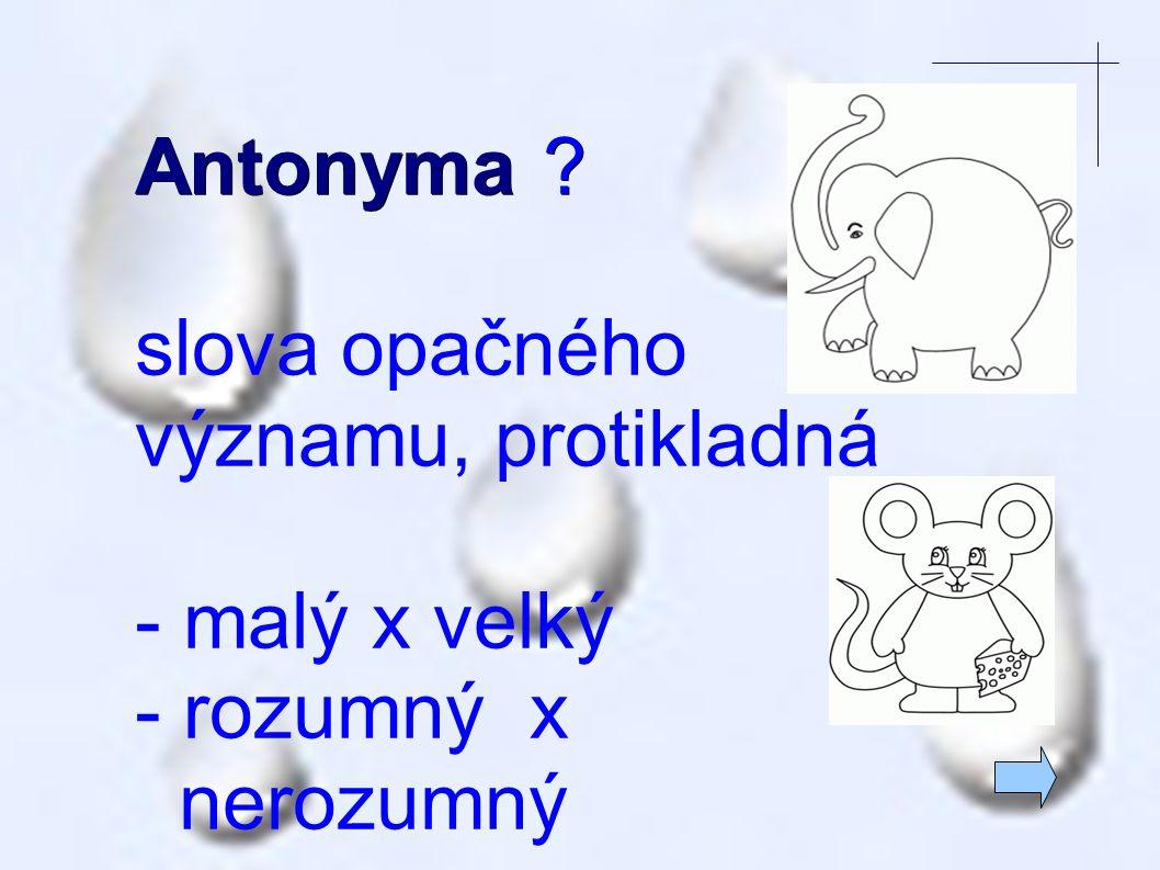 Antonyma ? slova opačného významu, protikladná - malý x velký - rozumný x nerozumný