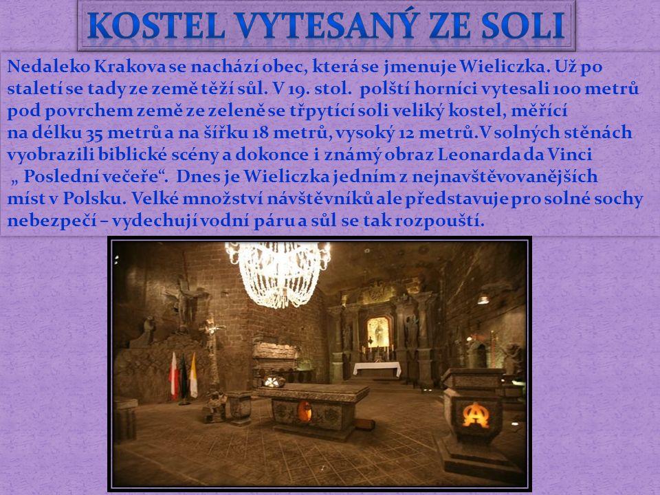 Nedaleko Krakova se nachází obec, která se jmenuje Wieliczka.