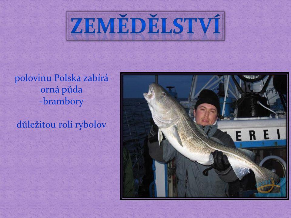 polovinu Polska zabírá orná půda -brambory důležitou roli rybolov