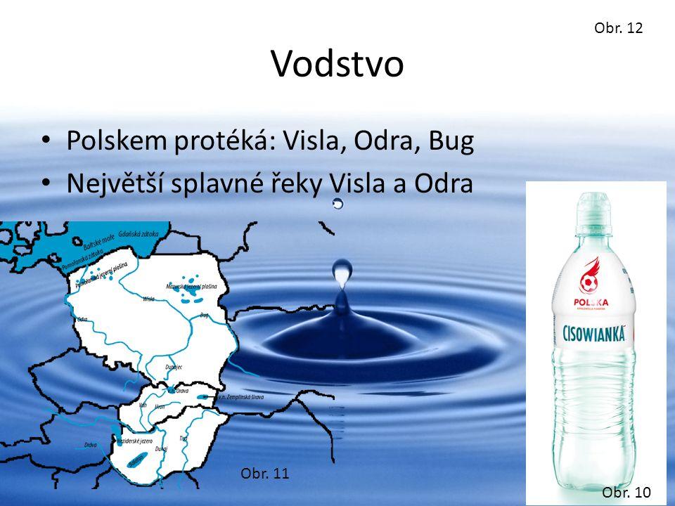 Obr. 12 Vodstvo Polskem protéká: Visla, Odra, Bug Největší splavné řeky Visla a Odra Obr.