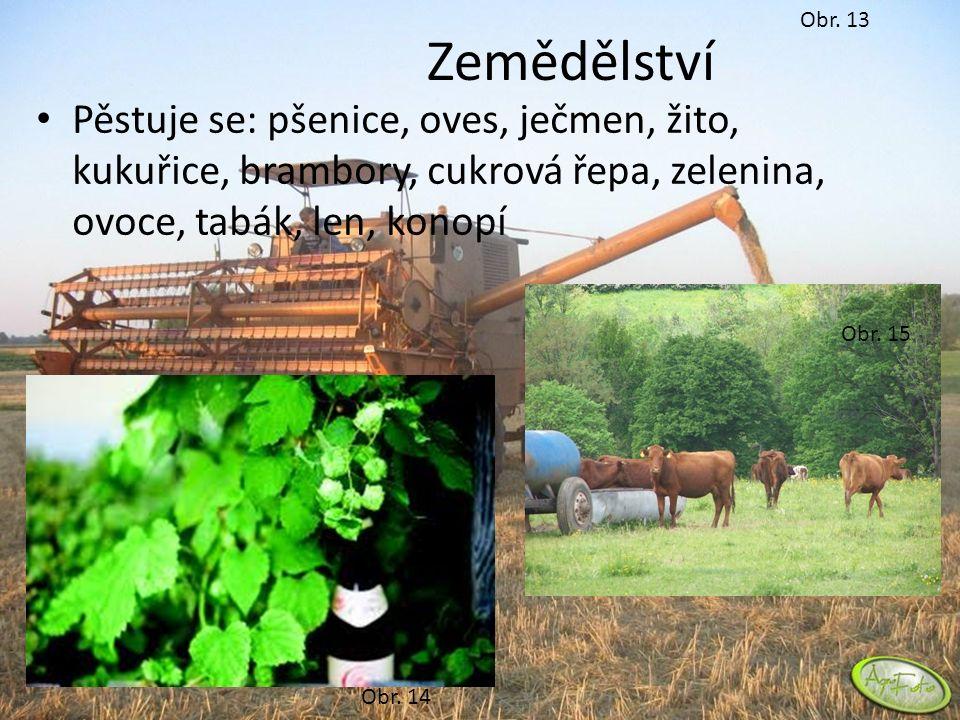Obr. 13 Zemědělství Pěstuje se: pšenice, oves, ječmen, žito, kukuřice, brambory, cukrová řepa, zelenina, ovoce, tabák, len, konopí Obr. 14 Obr. 15