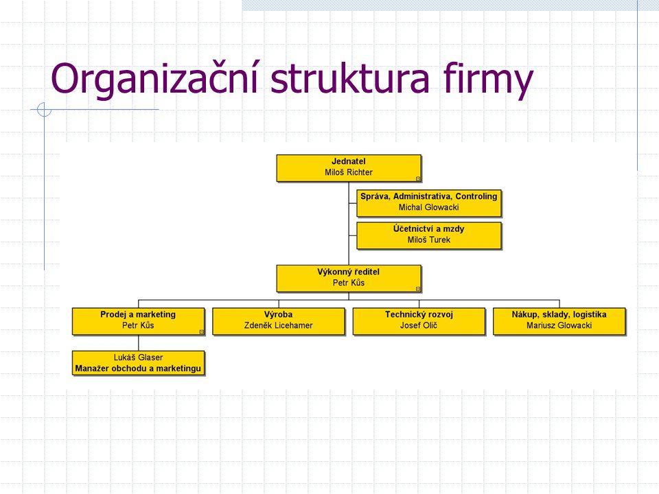 Organizační struktura firmy