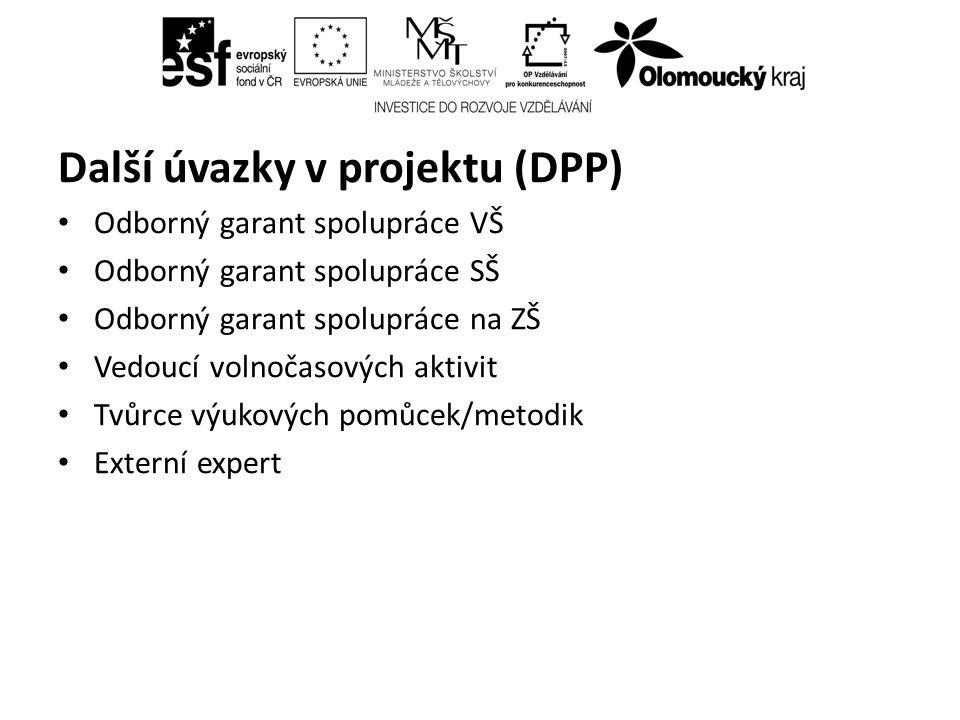 Další úvazky v projektu (DPP) Odborný garant spolupráce VŠ Odborný garant spolupráce SŠ Odborný garant spolupráce na ZŠ Vedoucí volnočasových aktivit Tvůrce výukových pomůcek/metodik Externí expert