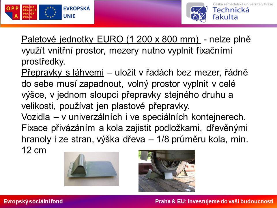 Evropský sociální fond Praha & EU: Investujeme do vaší budoucnosti Paletové jednotky EURO (1 200 x 800 mm) - nelze plně využít vnitřní prostor, mezery