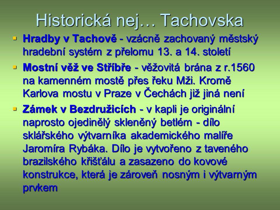 Historická nej… Tachovska  Hradby v Tachově - vzácně zachovaný městský hradební systém z přelomu 13.