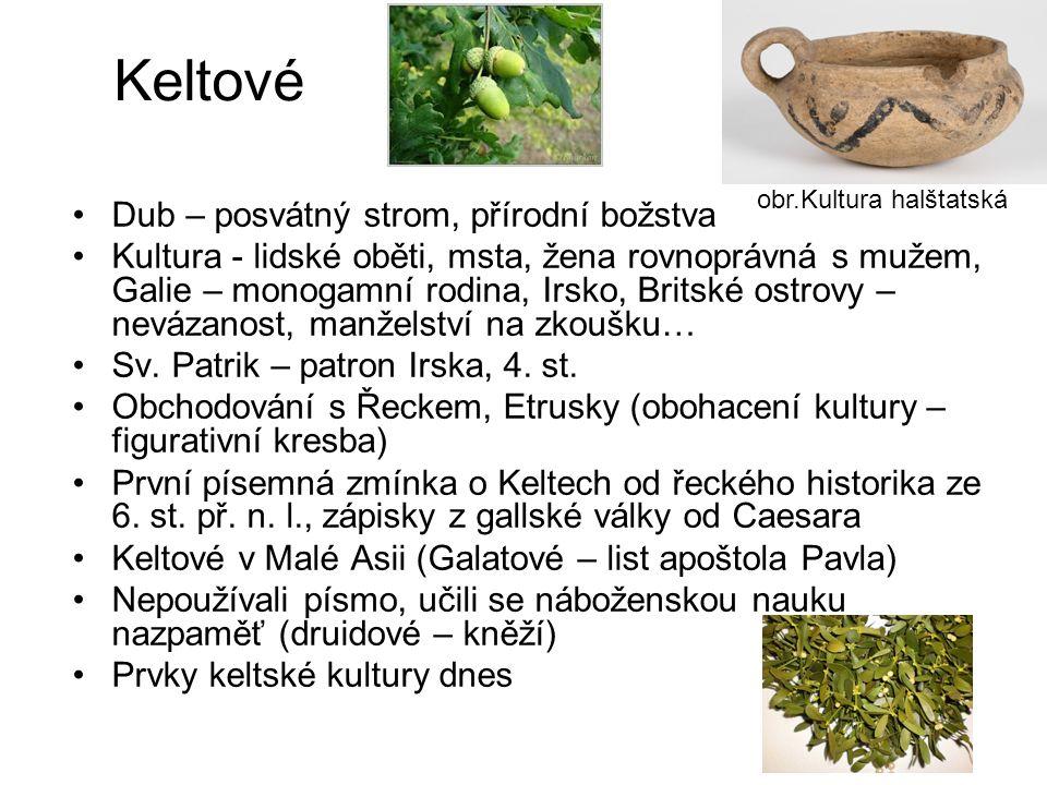 Keltové Dub – posvátný strom, přírodní božstva Kultura - lidské oběti, msta, žena rovnoprávná s mužem, Galie – monogamní rodina, Irsko, Britské ostrov