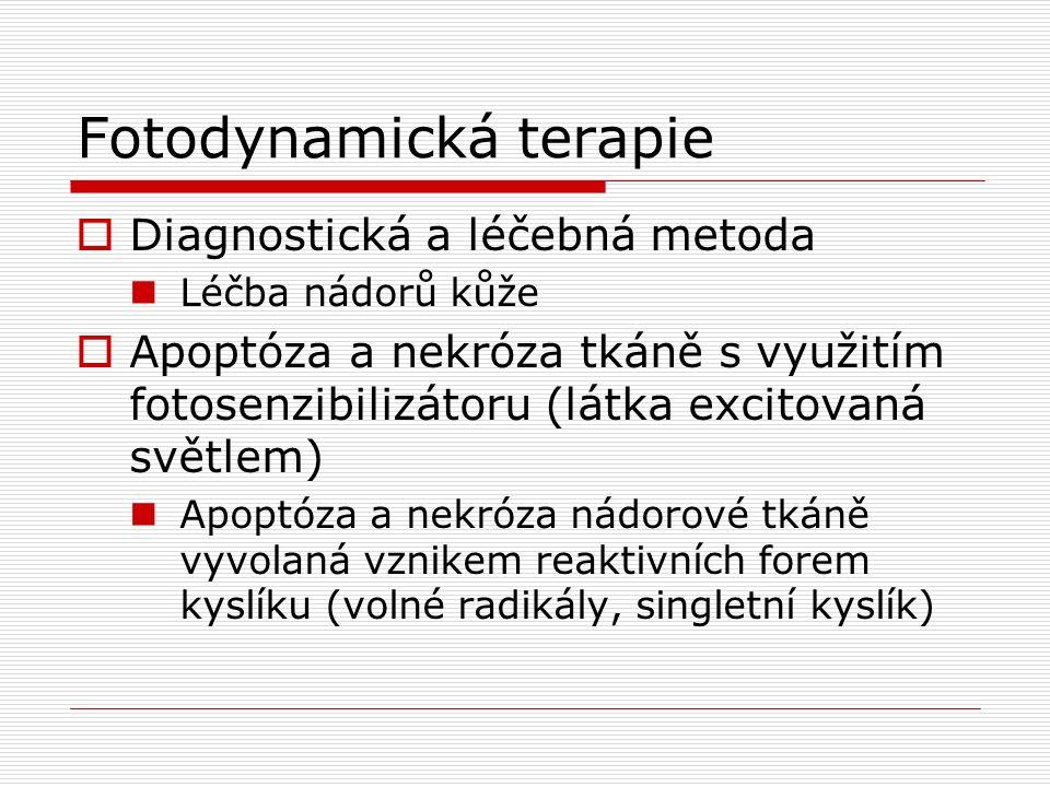  Diagnostická a léčebná metoda Léčba nádorů kůže  Apoptóza a nekróza tkáně s využitím fotosenzibilizátoru (látka excitovaná světlem) Apoptóza a nekróza nádorové tkáně vyvolaná vznikem reaktivních forem kyslíku (volné radikály, singletní kyslík)