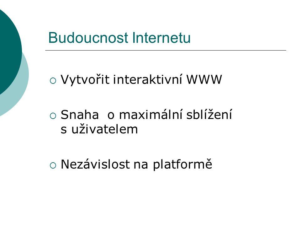 Budoucnost Internetu  Vytvořit interaktivní WWW  Snaha o maximální sblížení s uživatelem  Nezávislost na platformě