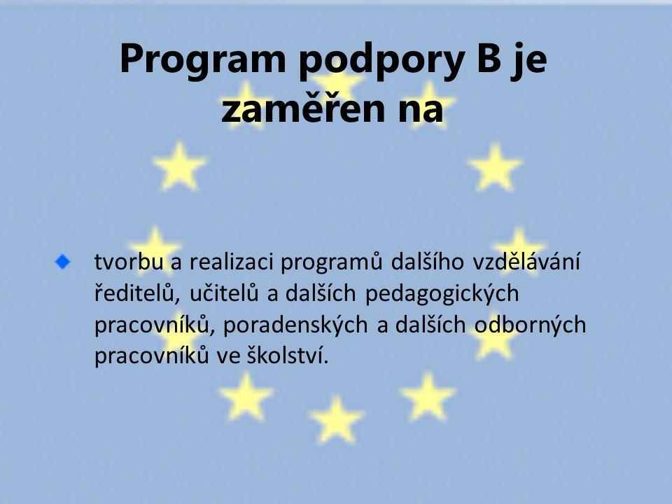Program podpory B je zaměřen na tvorbu a realizaci programů dalšího vzdělávání ředitelů, učitelů a dalších pedagogických pracovníků, poradenských a dalších odborných pracovníků ve školství.