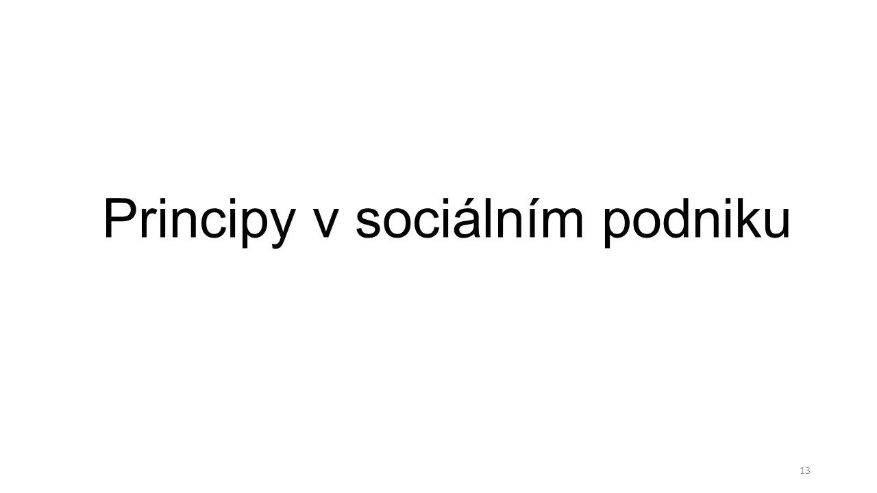 Principy v sociálním podniku 13