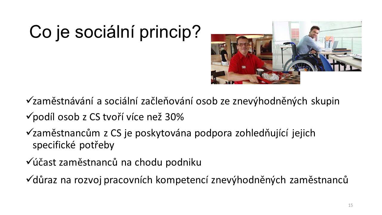 Co je sociální princip.