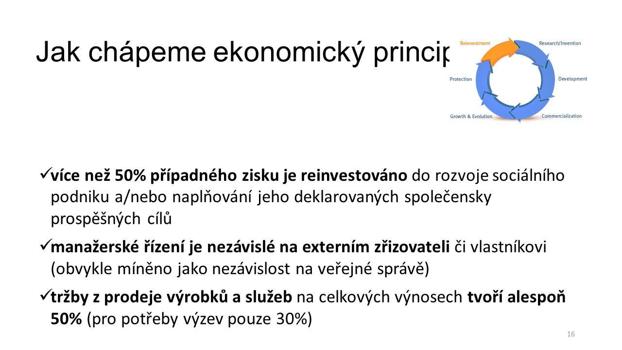 Jak chápeme ekonomický princip.
